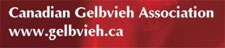 Canadian Gelbvieh Association company